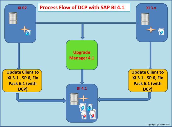 DCP Process Flow