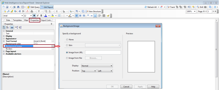 Dynamic Image in Webi2